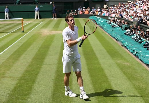 andy-murray-44681106