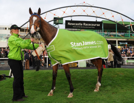 Horse Racing - StanJames.com Fighting Fifth Hurdle - Newcastle Racecourse