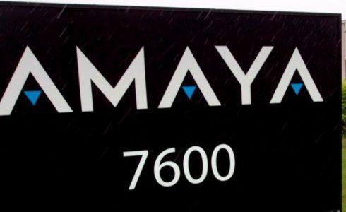 Amaya назначила нового технического директора